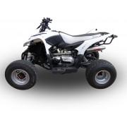 SCARICO GPR COMPATIBILE AEON AEON COBRA 350 DAL 2009 SCARICO COMPLETO OMOLOGATO DEEPTONE EVO4 ATV