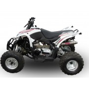 SCARICO GPR COMPATIBILE AEON AEON COBRA 400 (MOTOBIONISCS) SCARICO COMPLETO OMOLOGATO DEEPTONE EVO4 ATV